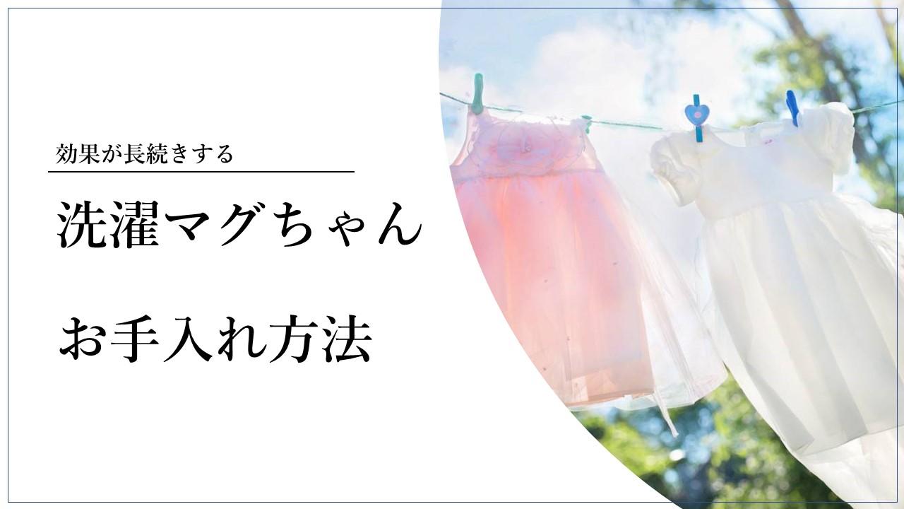 洗濯 マグ ちゃん メンテナンス